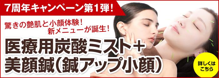 医療用炭酸ミスト+美容小顔鍼(鍼アップ小顔)